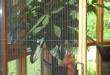 Pliszé szúnyogháló8